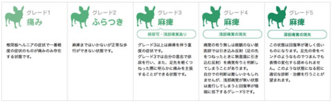 tsuikanban004